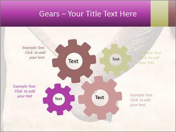 0000072856 PowerPoint Templates - Slide 47