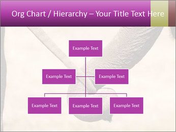 0000072856 PowerPoint Templates - Slide 66