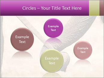 0000072856 PowerPoint Templates - Slide 77
