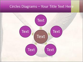 0000072856 PowerPoint Templates - Slide 78