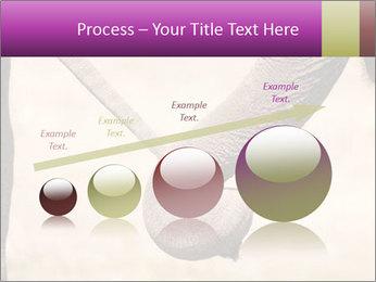 0000072856 PowerPoint Templates - Slide 87
