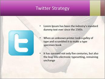 0000072856 PowerPoint Templates - Slide 9