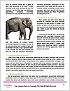 0000072856 Word Templates - Page 4