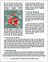 0000072863 Word Template - Page 4