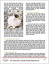 0000072864 Word Templates - Page 4