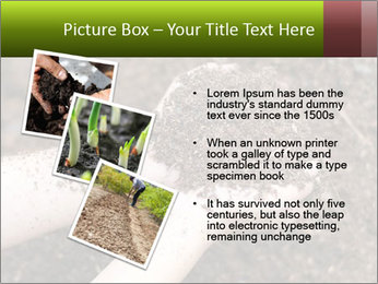 0000072866 PowerPoint Template - Slide 17