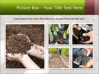 0000072866 PowerPoint Template - Slide 19