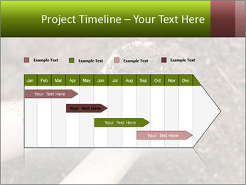 0000072866 PowerPoint Template - Slide 25