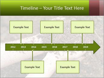 0000072866 PowerPoint Template - Slide 28