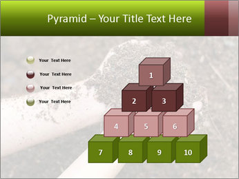0000072866 PowerPoint Template - Slide 31