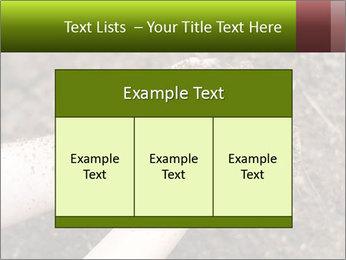 0000072866 PowerPoint Template - Slide 59