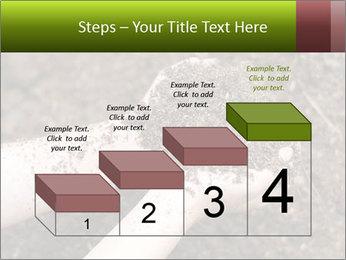 0000072866 PowerPoint Template - Slide 64