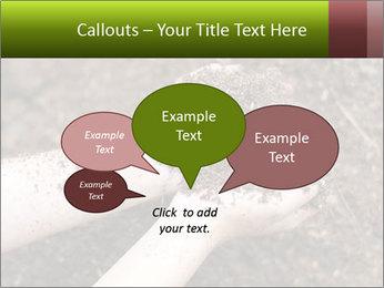 0000072866 PowerPoint Template - Slide 73
