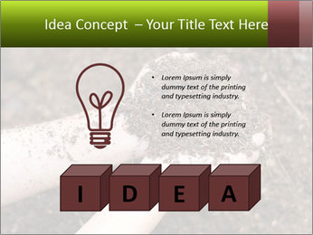 0000072866 PowerPoint Template - Slide 80