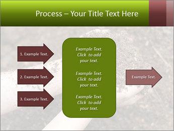 0000072866 PowerPoint Template - Slide 85