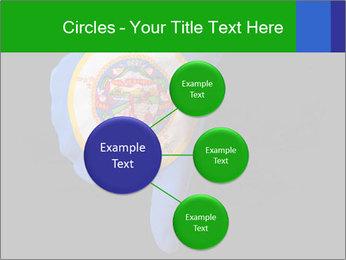 0000072867 PowerPoint Templates - Slide 79