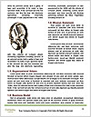 0000072873 Word Template - Page 4