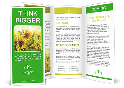 0000072879 Brochure Template
