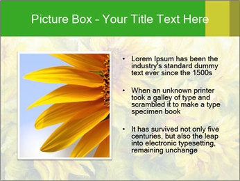 0000072879 PowerPoint Templates - Slide 13