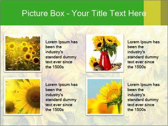 0000072879 PowerPoint Templates - Slide 14