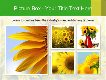 0000072879 PowerPoint Templates - Slide 19