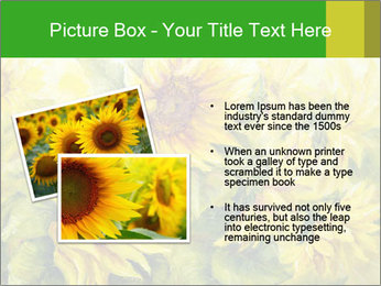 0000072879 PowerPoint Templates - Slide 20