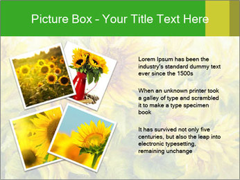 0000072879 PowerPoint Templates - Slide 23