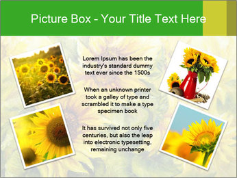 0000072879 PowerPoint Templates - Slide 24