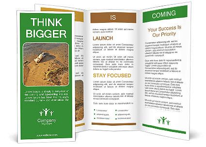0000072882 Brochure Template