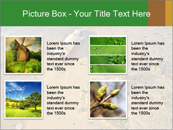 0000072882 PowerPoint Template - Slide 14