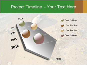 0000072882 PowerPoint Template - Slide 26