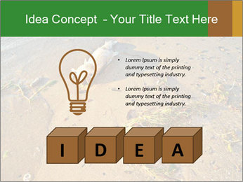 0000072882 PowerPoint Template - Slide 80