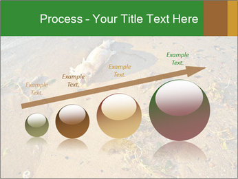 0000072882 PowerPoint Template - Slide 87