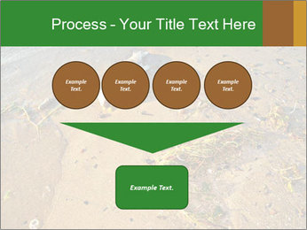 0000072882 PowerPoint Template - Slide 93