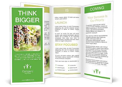 0000072884 Brochure Template