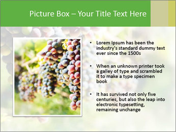 0000072884 PowerPoint Templates - Slide 13