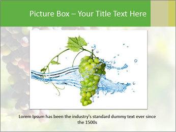 0000072884 PowerPoint Templates - Slide 16