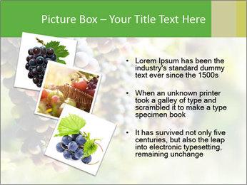 0000072884 PowerPoint Templates - Slide 17