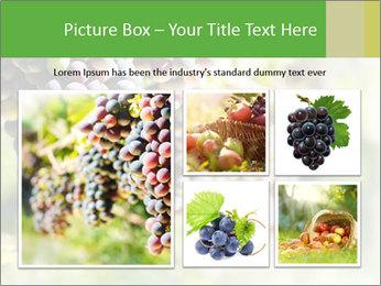 0000072884 PowerPoint Templates - Slide 19