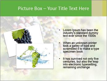 0000072884 PowerPoint Templates - Slide 20
