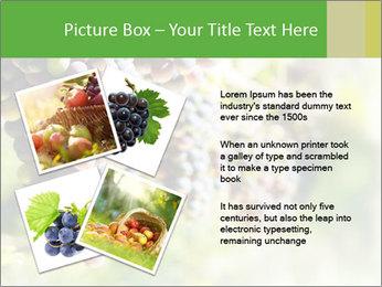 0000072884 PowerPoint Templates - Slide 23