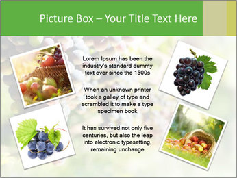 0000072884 PowerPoint Templates - Slide 24