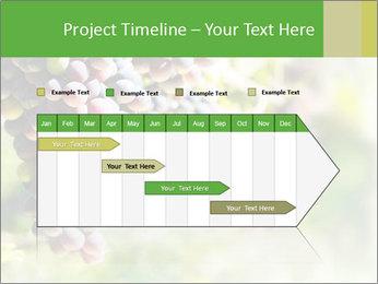 0000072884 PowerPoint Templates - Slide 25