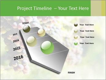 0000072884 PowerPoint Templates - Slide 26