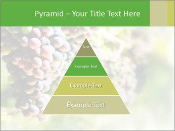 0000072884 PowerPoint Templates - Slide 30