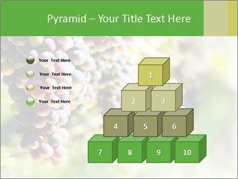 0000072884 PowerPoint Templates - Slide 31
