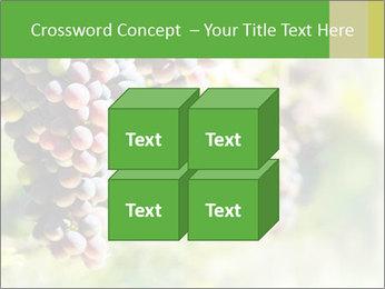 0000072884 PowerPoint Templates - Slide 39