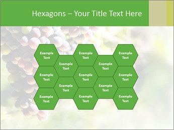 0000072884 PowerPoint Templates - Slide 44