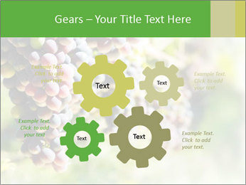 0000072884 PowerPoint Templates - Slide 47