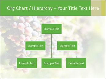 0000072884 PowerPoint Templates - Slide 66